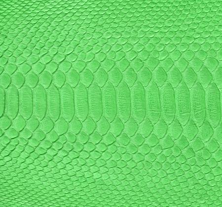 Green snake skin imitation background Stock Photo