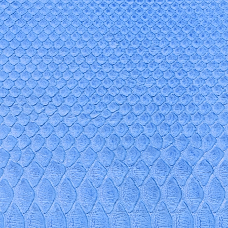 blue snake skin imitation background photo