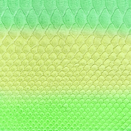 snakes and ladders: colorful snake skin imitation background Stock Photo