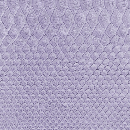 snakes and ladders: violet snake skin imitation background