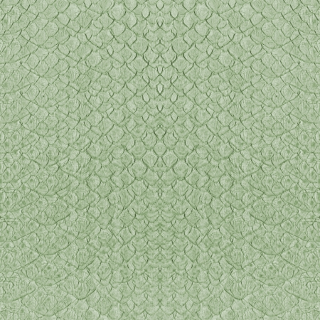 snakes and ladders: natural snake skin imitation background
