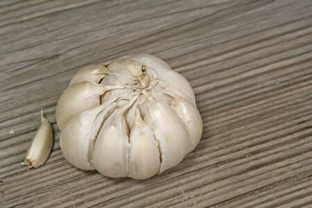 garlic Stock Photo - 473957