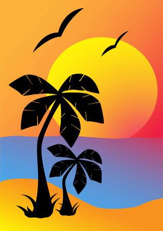 setting sun: Silhouettes of palm trees against the setting sun Illustration