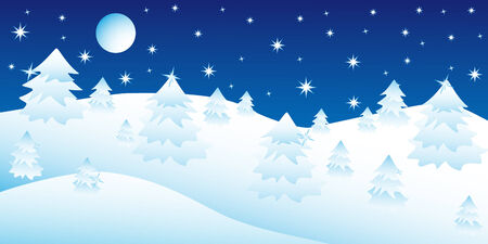Christmas night in the winter forest, postcard, background.  Illustration Vector