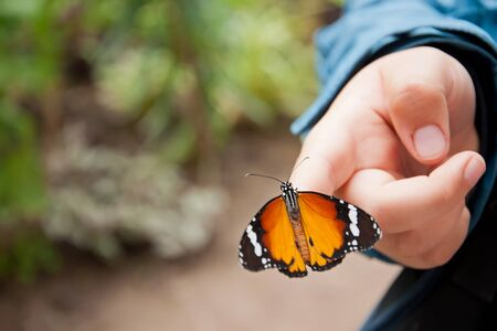 human kind: Beautiful orange butterfly on childs hand, close up Stock Photo