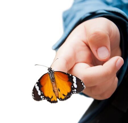 Beautiful orange butterfly on child's hand isolate on white, close up Stock Photo - 9596212