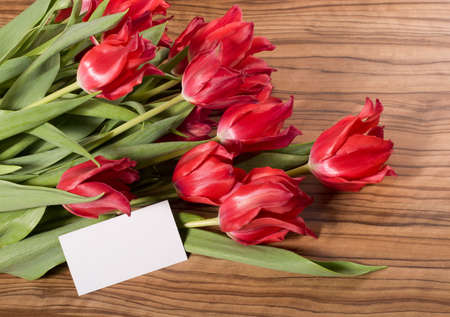 Beautiful pink tulips with white card lie on the table Stock Photo - 12667130