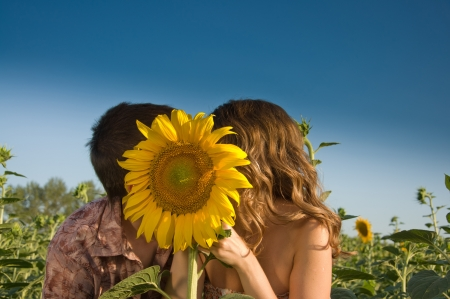 Happy young couple and sunflower on the field photo