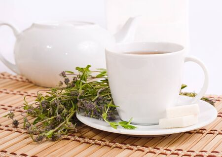 water thyme: the cup of herbal tea with thyme Stock Photo