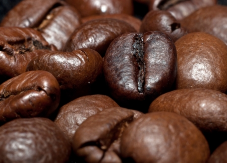 stimulated: Many coffee beans, close-up