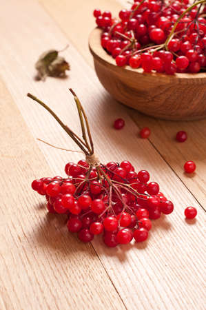 guelder rose berry: Red viburnum berries on wooden background Stock Photo