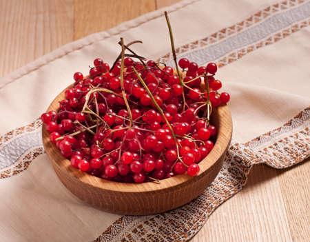 guelder rose berry: Red viburnum berries on towel