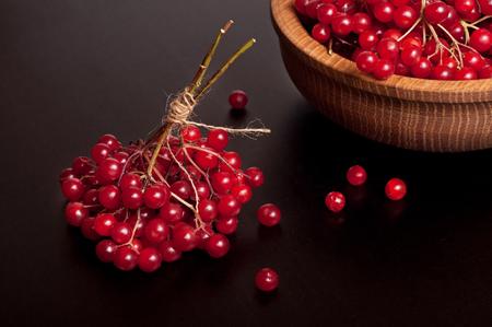 guelder rose berry: Red viburnum berries on dark table