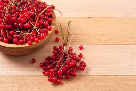 guelder rose berry: Bright red viburnum berries on table