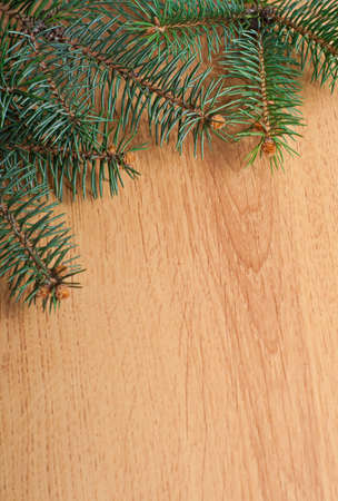 Christmas fir-tree branches on wooden background photo