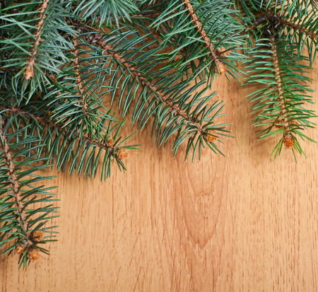Christmas fir-tree branches border on wooden background photo
