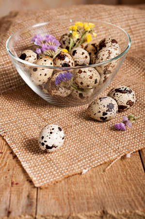 Quail eggs in glass dish and dry flowers photo