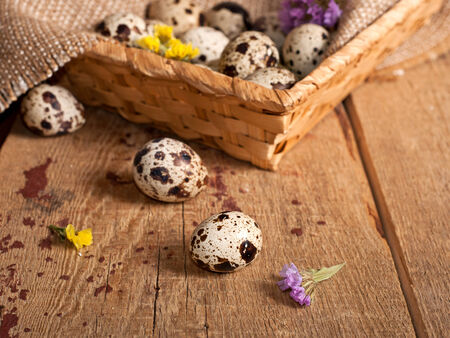 Quail eggs in basket and dry flowers. Easter concept photo
