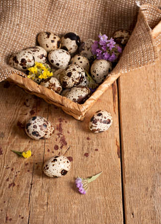 Quail eggs in basket and dry flowers, top view. Easter concept photo