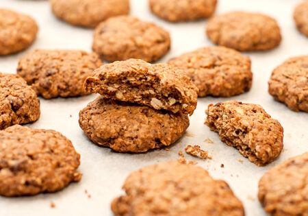 Homemade oatmeal cookies with chocolate and nuts photo