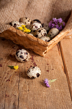 Quail eggs in basket and dry flowers on old wooden table photo