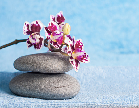 Spa stones and pink orchid on blue background photo
