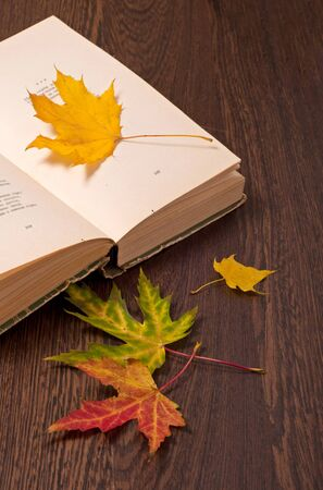 fall leaf: Opened book and autumn leaves on wooden table. Autumn concept Stock Photo