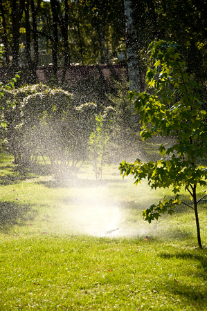 Gardening, automatic watering lawns. Summer green park Stock Photo
