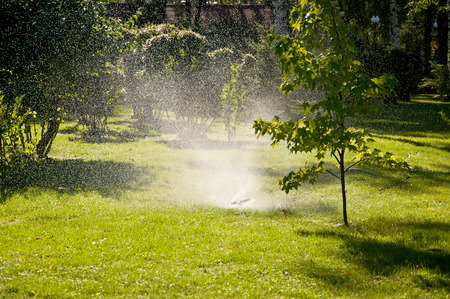 The lawn sprinkler spraying water in green park Stock Photo
