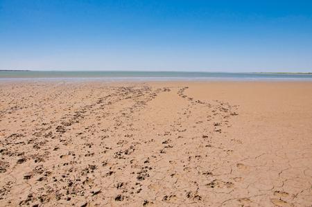 suelo arenoso: Huellas en una playa de arena cerca del mar
