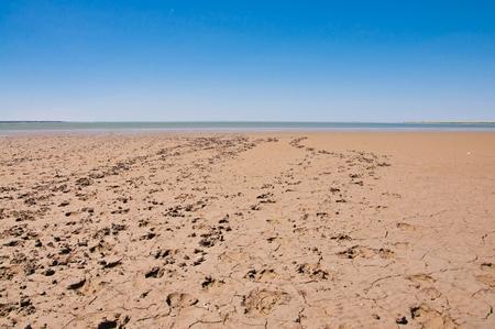 crack: Footprints on a sandy beach near the sea