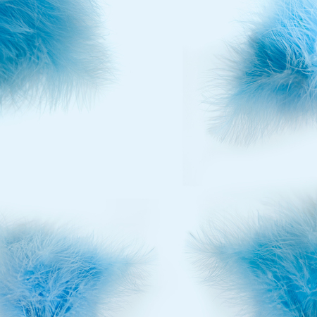 Tender blue winter abstract background, soft blurred blue feather on white