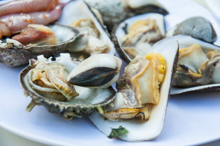 shrimp cocktail: Seafood Cocktail. Oysters, seashells, mussels on a plate before grilling.