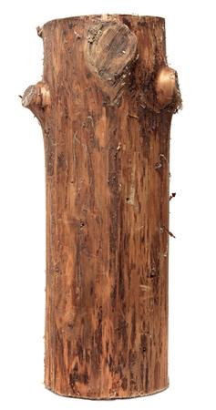wood log: log isolated on a white