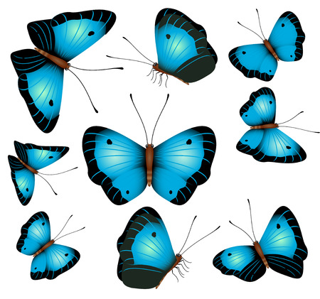 Blue butterflies isolated on a white background Illustration