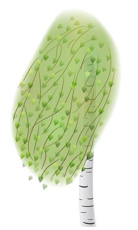 plats: EPS10 vector birch