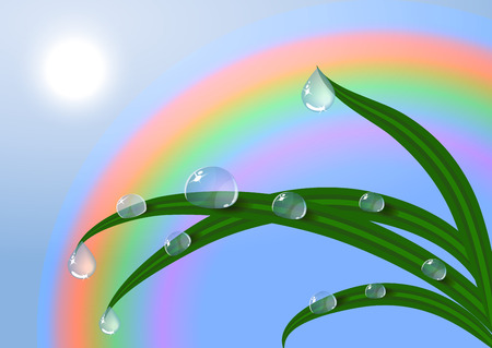 EPS10 vector dew Sunrise and fresh dewy grass. Sunny day concept. Illustration