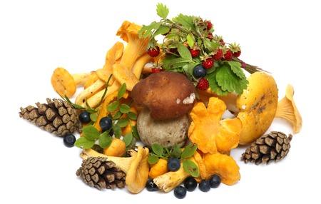 キノコ、果実、松ぼっくり、イチゴ、白い背景で隔離のブルーベリー。森の贈り物。