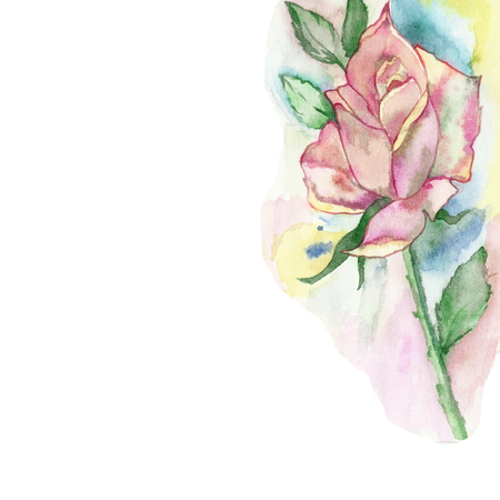 Lush rose on a blurred watercolor background. Watercolor composition for beautiful design invitations, cards, posters, with place for your text.
