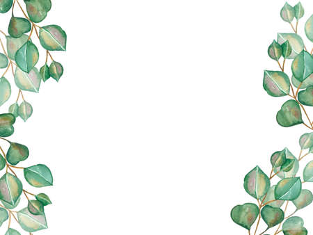Watercolor hand painted nature greenery vertical banner frame with green eucalyptus leaves on branch and shadows bouquet on the white background for invite and greeting card with the space for text