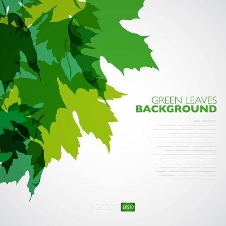 fondo natural: Natural de fondo. Vector de fondo con las hojas verdes. Ilustraci�n del vector.