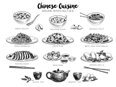 meat dish: Vector hand drawn illustration with chinese food. Sketch. Illustration