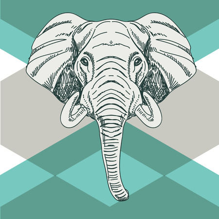 """wild life"": Vector hand drawn illustration with elephant head. Wild Animal. Wild life."