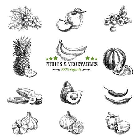 frutas: Vector conjunto de frutas y verduras. Comida saludable. Ilustración del vector en estilo de dibujo. Dibujado a mano elementos de diseño.