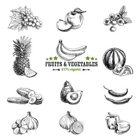 fruit illustration: Vector set of fruit and vegetables. Healthy food. Vector illustration in sketch style. Hand drawn design elements.
