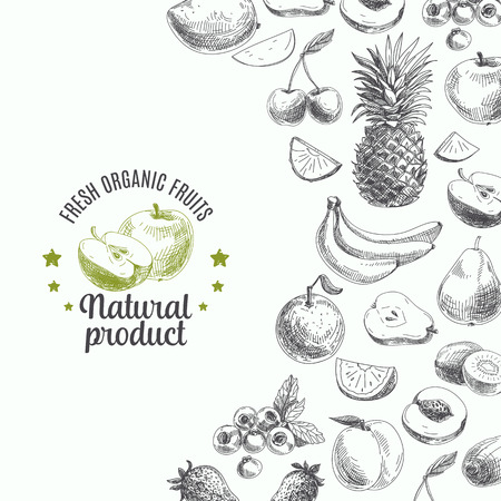 Hand drawn vector illustration with fruits and barries. Vintage. Sketch.