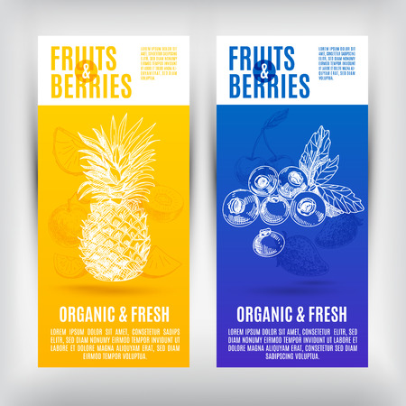 Vector banners set  with hand drawn fruits. Organic and fresh fruits illustration.