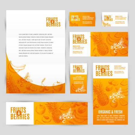 summer fruit: Hand drawn vector corporate template set with fruits and barries. Vintage. Sketch.