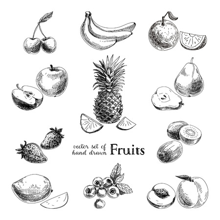 Vector set of hand drawn vintage  fruits and berries. Retro illustration. Ilustração
