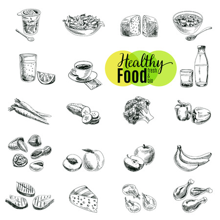 boceto: Vector conjunto de alimentos saludables. Ilustración del vector en estilo de dibujo. Dibujado a mano elementos de diseño.